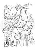 Woodware - Frosty Robin - Clear Magic Stamp Set - FRS702